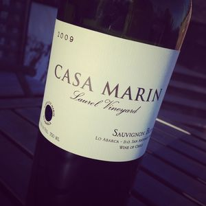 Casa Marin Laurel Vineyard Sauvignon Blanc San Antonio Valley 2009_2