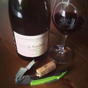 Pierre-Marie Chermette Coeur de Vendanges Beaujolais 2014_2