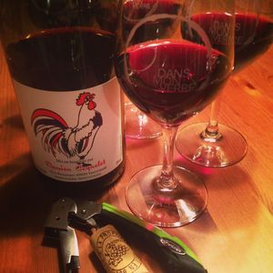 Damien Coquelet Gamay Vin de France Nouveau 2015_2
