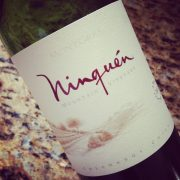 Vina Mongras Ninquen Colchagua Valley 2013