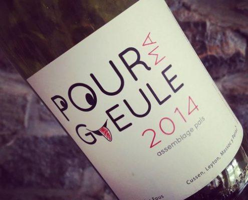Clos des Fous Pour ma Gueule Del Sur Itata 2014