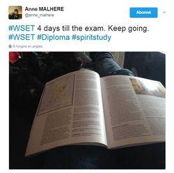 Anne Malhere - Études du WSET