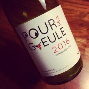 Clos des Fous Pour Ma Gueule Valle del Itata 2016