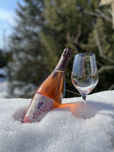 Semaine du 28 février 2021 - C'est la relâche! Laherte-Champagne